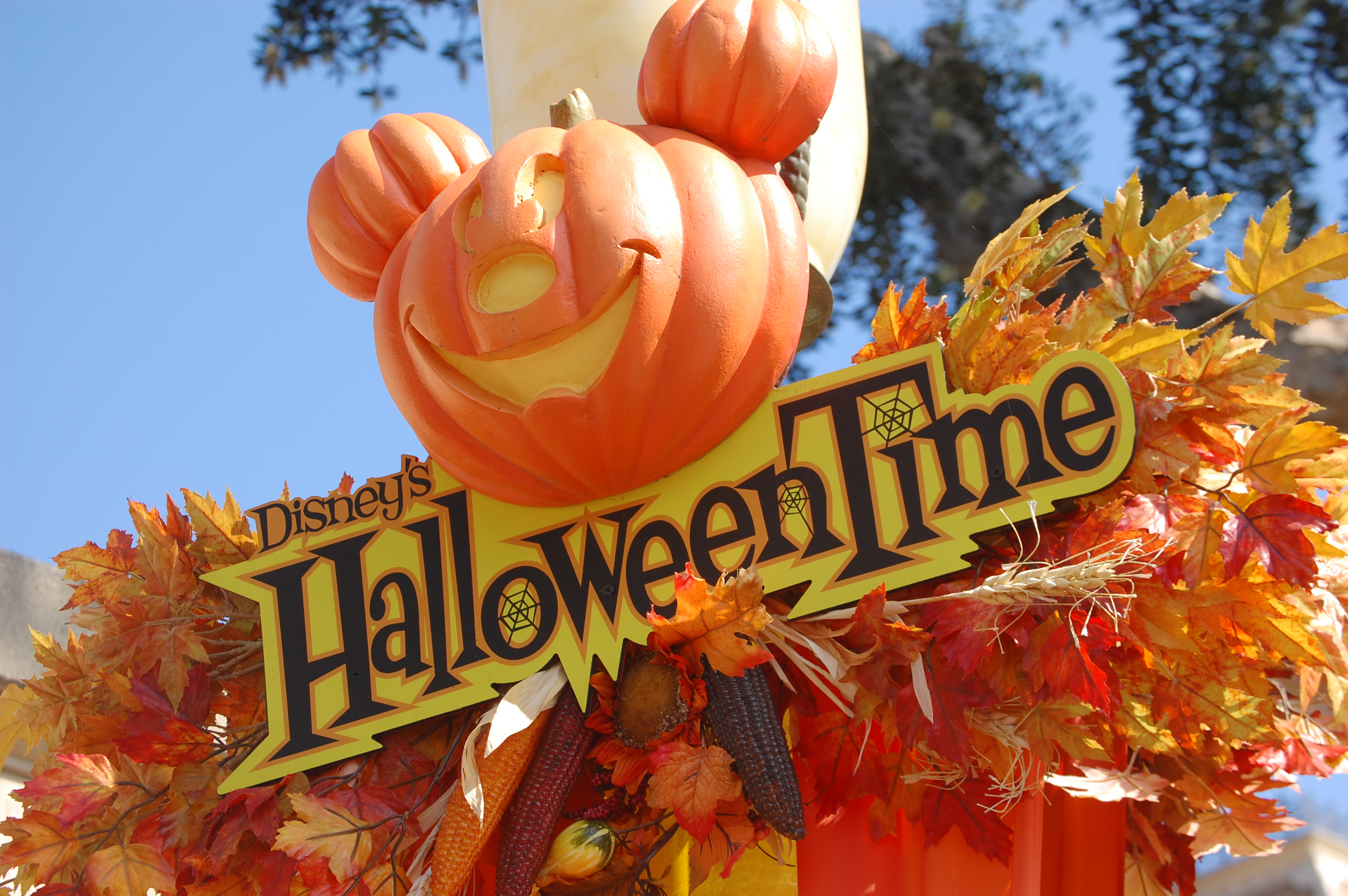 halloween time sign at disney | mizwrite