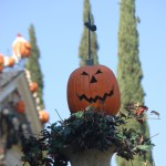 Jack-o-Lantern in Urn